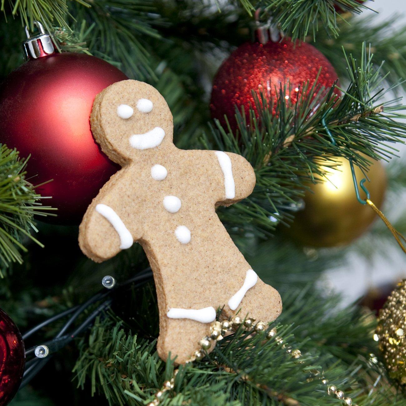 Omini gingerbread di Natale
